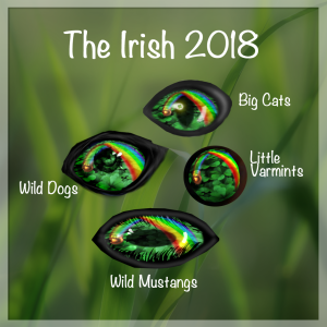 The Irsih 2018
