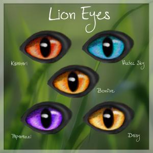 Lion Eyes 2018