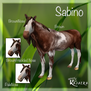 Sabino-Brown