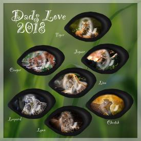 DadsLove 2018BC
